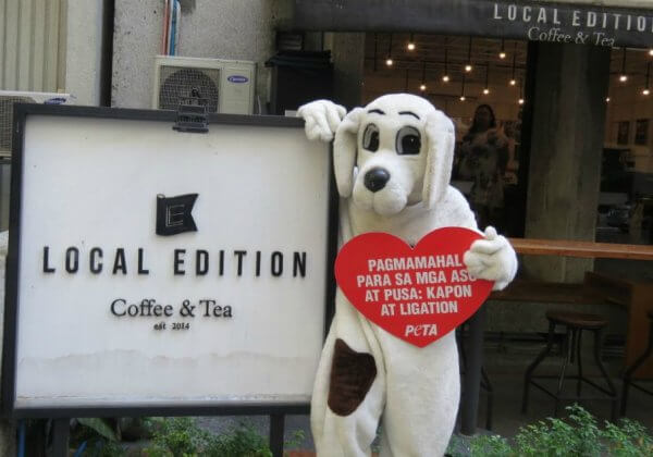 How Your Soy Latte Can Help Dogs and Cats in the Philippines