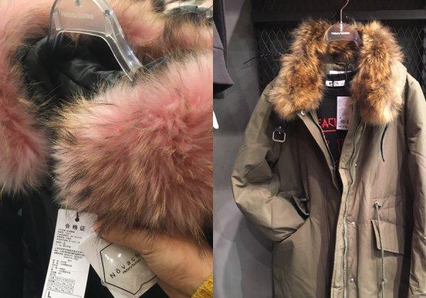 Urge Meters/bonwe to Stop Selling Fur