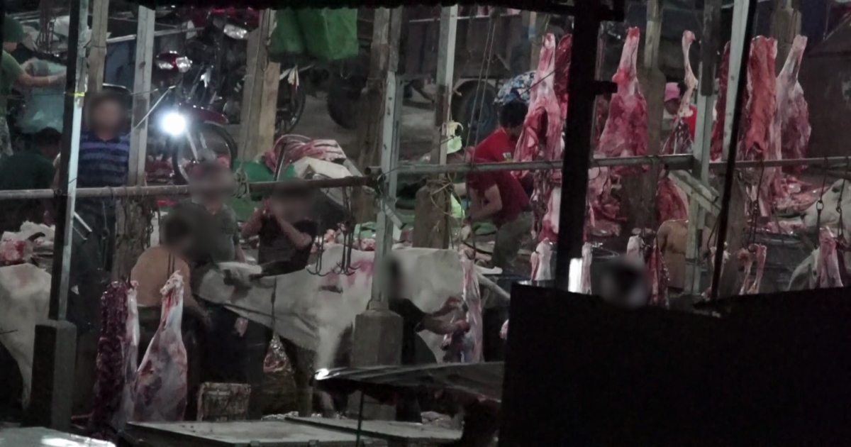 New Footage Reveals Even More Shocking Abuse Inside Cambodia's Meat