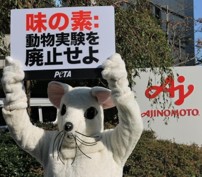 PETA Asks Ajinomoto to Stop Cutting Up Dogs for Pointless Tests at Shareholders Meeting