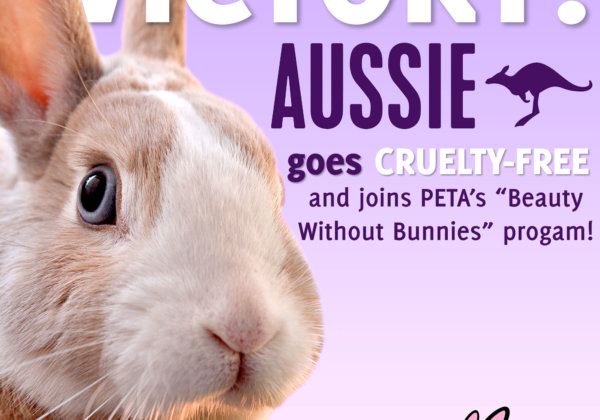 Hair-Care Brand Aussie Bans Animal Tests and Goes Cruelty-Free!
