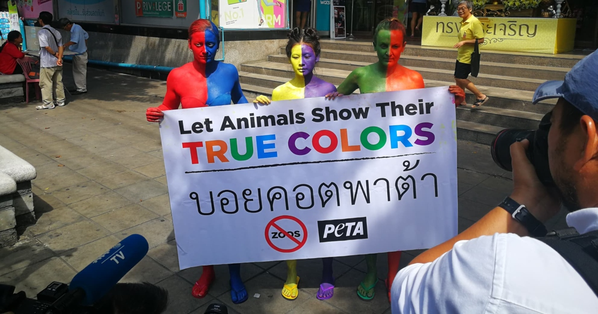PHOTOS: Colorful PETA Protesters Call For Boycott of the Pata Zoo