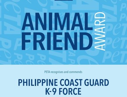 Philippine Coast Guard Wins PETA Award for Helping Homeless Animals During the COVID-19 Pandemic