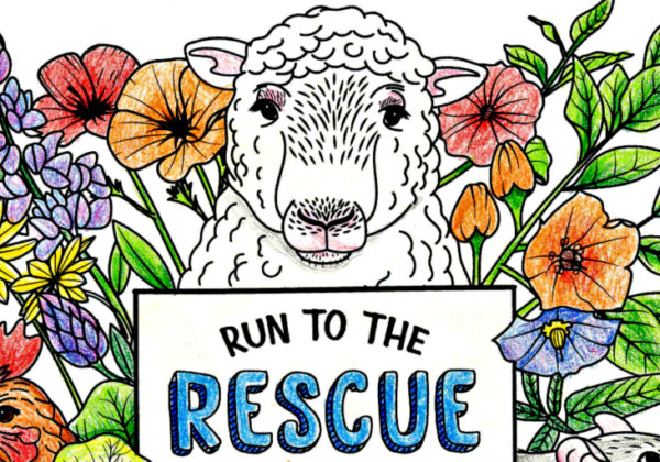 Bored? Get Creative With These PETA Coloring Pages