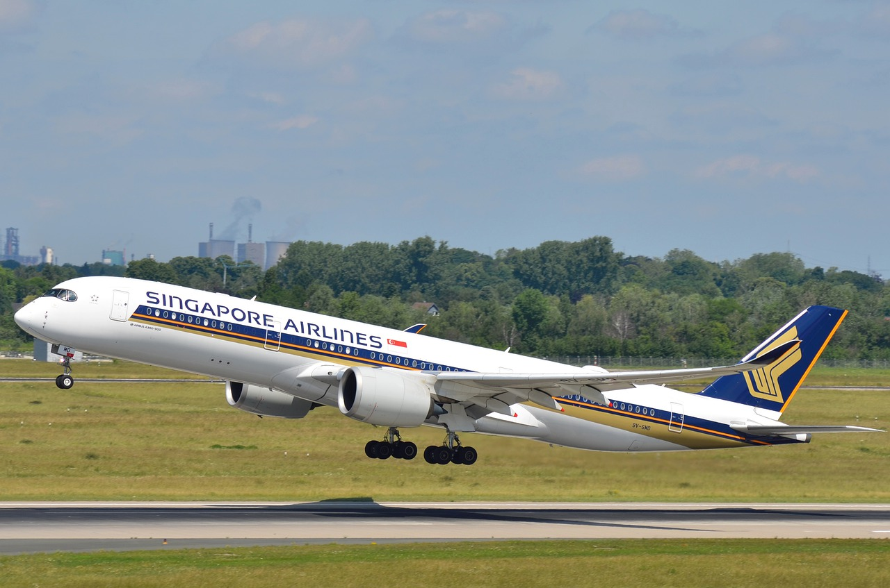 Hey, Singapore Airlines—This Is the Easiest Way to Help Offset Carbon Emissions on Your 'Flights to Nowhere'