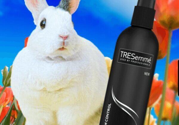 TRESemmé Bans All Animal Testing Worldwide!