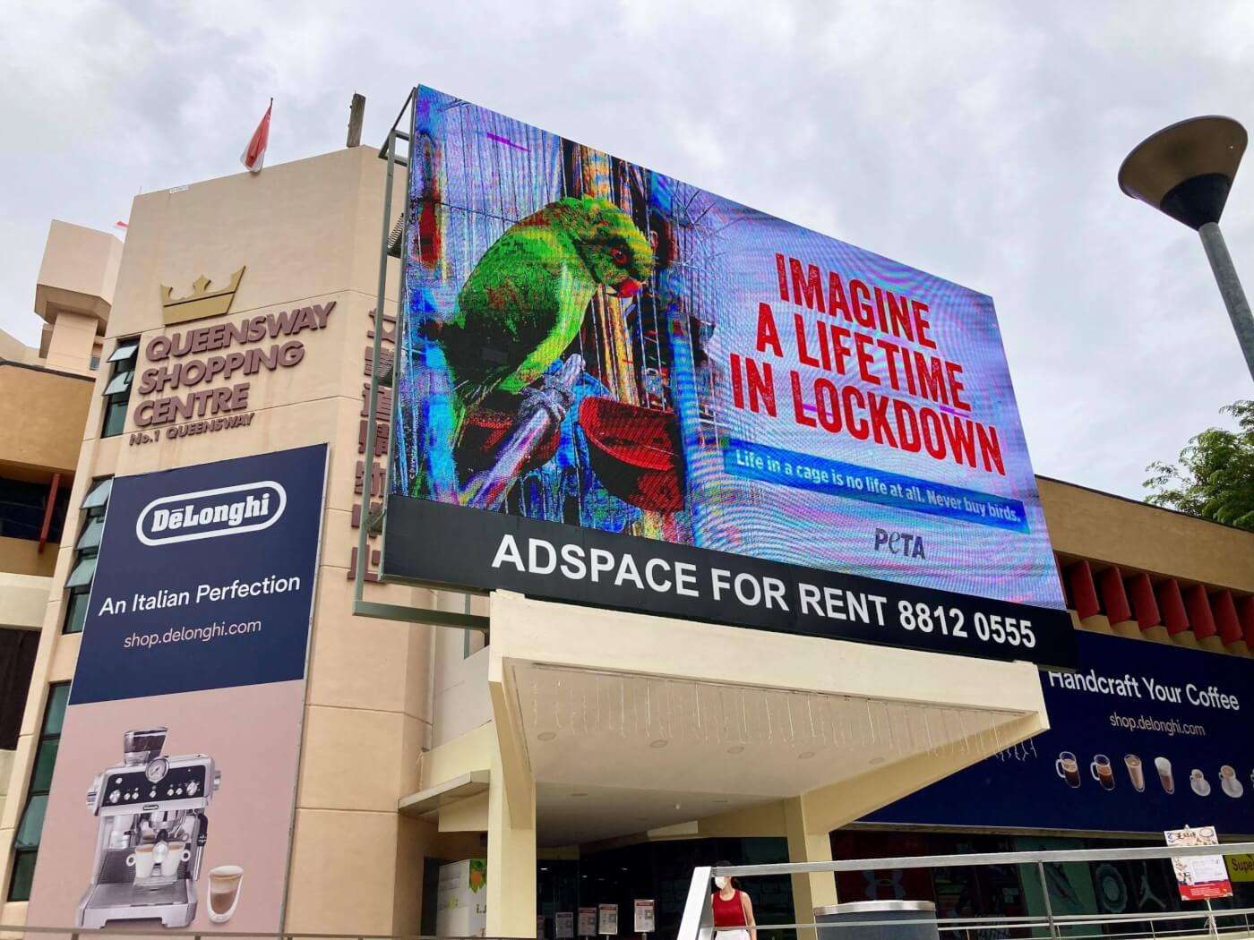 PETA's New Billboards Show That Birds in Cages Are in Permanent Lockdown
