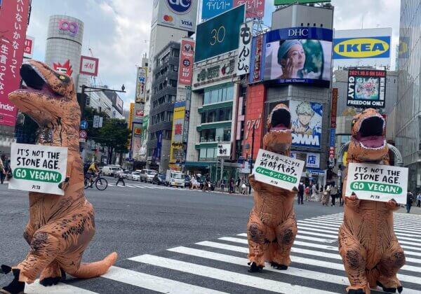 Why Did These PETA 'Dinosaurs' Run Across Shibuya Crossing in Tokyo?